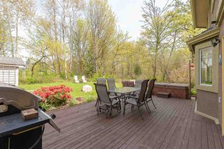 Photo 19: 15681 78A AVENUE in Surrey: Fleetwood Tynehead House for sale : MLS®# R2292781