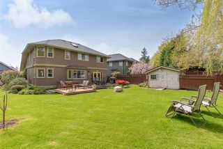 Photo 20: 15681 78A AVENUE in Surrey: Fleetwood Tynehead House for sale : MLS®# R2292781