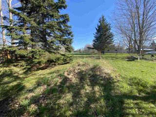 Photo 15: 163 OAKDENE Avenue in Kentville: 404-Kings County Residential for sale (Annapolis Valley)  : MLS®# 201925069
