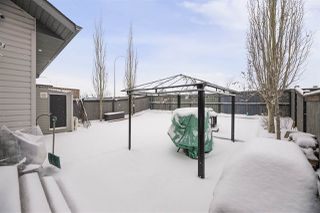 Photo 26: 15910 49 Street in Edmonton: Zone 03 House for sale : MLS®# E4179471