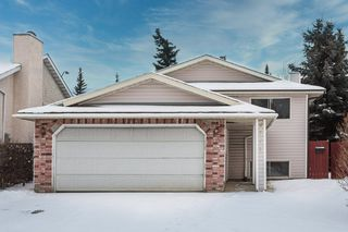 Main Photo:  in Edmonton: Zone 29 House for sale : MLS®# E4182236
