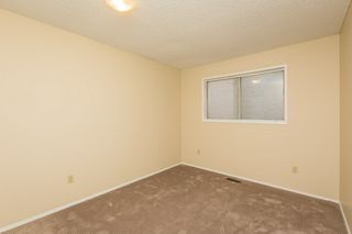 Photo 14: 4719 38A Avenue in Edmonton: Zone 29 House for sale : MLS®# E4182236