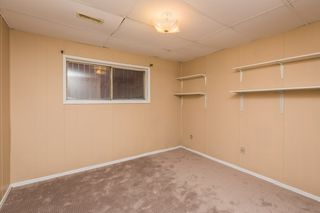 Photo 23: 4719 38A Avenue in Edmonton: Zone 29 House for sale : MLS®# E4182236