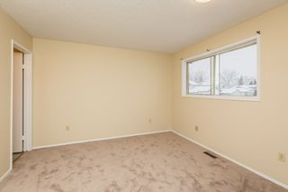 Photo 11: 4719 38A Avenue in Edmonton: Zone 29 House for sale : MLS®# E4182236