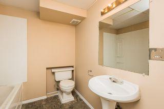 Photo 25: 4719 38A Avenue in Edmonton: Zone 29 House for sale : MLS®# E4182236
