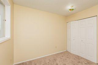 Photo 16: 4719 38A Avenue in Edmonton: Zone 29 House for sale : MLS®# E4182236