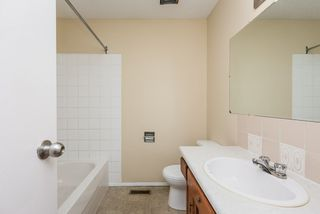 Photo 17: 4719 38A Avenue in Edmonton: Zone 29 House for sale : MLS®# E4182236