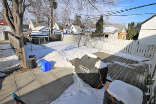 Photo 24: 981 Hector Avenue in Winnipeg: Residential for sale (1Bw)  : MLS®# 202004170