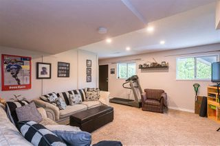 """Photo 29: 19677 SOMERSET Drive in Pitt Meadows: Mid Meadows House for sale in """"Somerset"""" : MLS®# R2460932"""