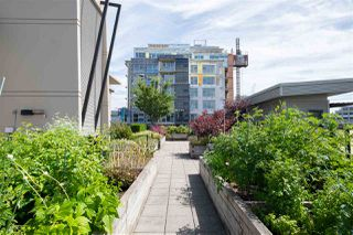 "Photo 21: 212 388 W 1ST Avenue in Vancouver: False Creek Condo for sale in ""The Exchange"" (Vancouver West)  : MLS®# R2478234"