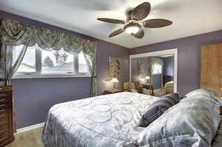 Photo 17: 5915 18 Avenue NE in Calgary: Pineridge Detached for sale : MLS®# A1032998