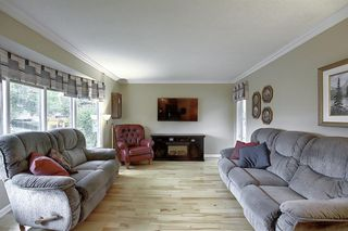 Photo 3: 5915 18 Avenue NE in Calgary: Pineridge Detached for sale : MLS®# A1032998