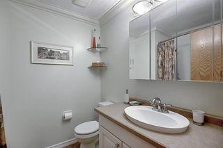 Photo 23: 5915 18 Avenue NE in Calgary: Pineridge Detached for sale : MLS®# A1032998