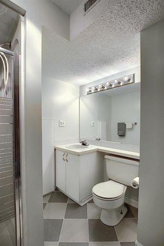 Photo 30: 5915 18 Avenue NE in Calgary: Pineridge Detached for sale : MLS®# A1032998