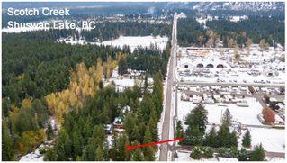 Photo 47: 1039 Scotch Creek Wharf Road: Scotch Creek House for sale (Shuswap Lake)  : MLS®# 10217712
