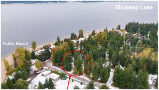 Photo 46: 1039 Scotch Creek Wharf Road: Scotch Creek House for sale (Shuswap Lake)  : MLS®# 10217712