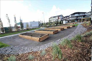 Photo 23: 207 1506 Tamarack Boulevard in Edmonton: Zone 30 Condo for sale : MLS®# E4224300