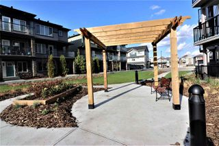 Photo 24: 207 1506 Tamarack Boulevard in Edmonton: Zone 30 Condo for sale : MLS®# E4224300