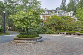 Photo 20: 513 2655 CRANBERRY DRIVE in Vancouver: Kitsilano Condo for sale (Vancouver West)  : MLS®# R2315131