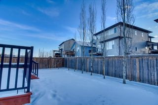 Photo 5: 2770 Chinook Winds Drive SW: Airdrie Detached for sale : MLS®# A1050651