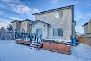 Photo 31: 2770 Chinook Winds Drive SW: Airdrie Detached for sale : MLS®# A1050651