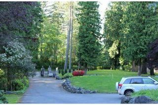 Photo 18: 13838 CRESCENT Road in Surrey: Elgin Chantrell House for sale (South Surrey White Rock)  : MLS®# R2519373