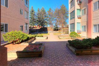 Photo 19: 206 920 Saskatoon Road in Kelowna: Rutland South Multi-family for sale (Central Okanagan)  : MLS®# 10211030
