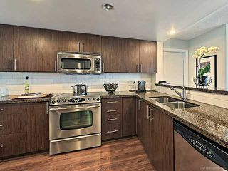 Photo 4: 125 Milross Avenue in Vancouver: Mount Pleasant VE Condo for sale (Vancouver East)  : MLS®# V1042671