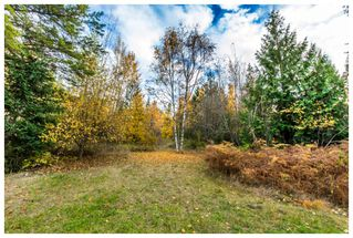 Photo 26: 1546 Blind Bay Road in Blind Bay: Vacant Land for sale : MLS®# 10125568