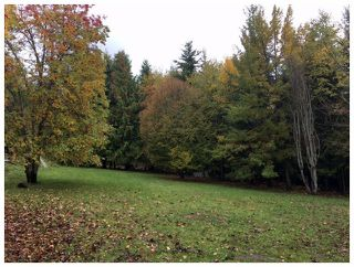 Photo 7: 1546 Blind Bay Road in Blind Bay: Vacant Land for sale : MLS®# 10125568