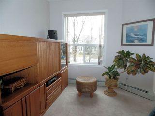 Photo 8: #210 9760 174 ST NW in Edmonton: Zone 20 Condo for sale : MLS®# E4042458