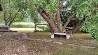 Photo 10: 51121 Range Road 270: Rural Parkland County House for sale : MLS®# E4171903