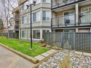 Photo 18: 103 9632 120A Street in Surrey: Cedar Hills Condo for sale (North Surrey)  : MLS®# R2459280