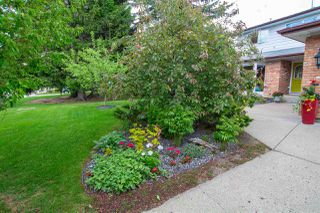 Photo 35: 14603 63 Avenue in Edmonton: Zone 14 House for sale : MLS®# E4200406