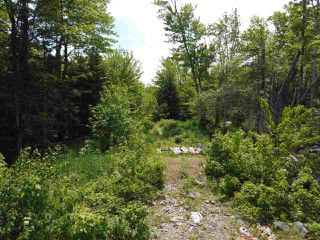 Photo 4: Pioneer Drive in Vaughan: 403-Hants County Vacant Land for sale (Annapolis Valley)  : MLS®# 202010405