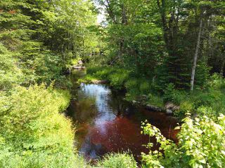 Photo 3: Pioneer Drive in Vaughan: 403-Hants County Vacant Land for sale (Annapolis Valley)  : MLS®# 202010405
