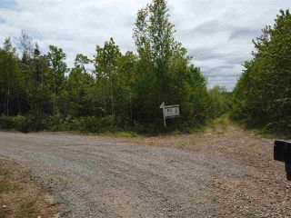 Photo 9: Pioneer Drive in Vaughan: 403-Hants County Vacant Land for sale (Annapolis Valley)  : MLS®# 202010405