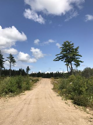 Photo 12: Pioneer Drive in Vaughan: 403-Hants County Vacant Land for sale (Annapolis Valley)  : MLS®# 202010405