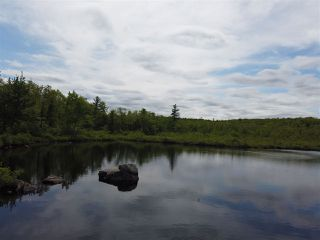 Photo 1: Pioneer Drive in Vaughan: 403-Hants County Vacant Land for sale (Annapolis Valley)  : MLS®# 202010405