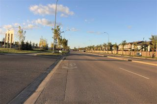 Photo 46: 2513 PRICE Way in Edmonton: Zone 55 House Half Duplex for sale : MLS®# E4213855
