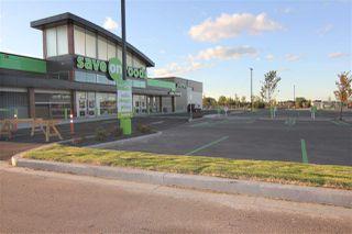Photo 45: 2513 PRICE Way in Edmonton: Zone 55 House Half Duplex for sale : MLS®# E4213855