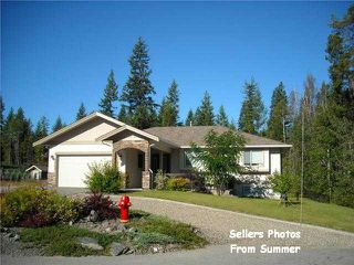 Photo 57: 2753 Sunnydale DR in Blind Bay: Shuswap Lake Estates House for sale : MLS®# 10061340
