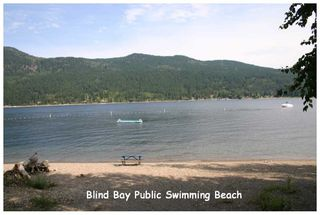 Photo 46: 2753 Sunnydale DR in Blind Bay: Shuswap Lake Estates House for sale : MLS®# 10061340
