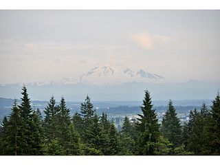 Photo 18: 3472 STEPHENS CT in Coquitlam: Burke Mountain House for sale : MLS®# V1115281