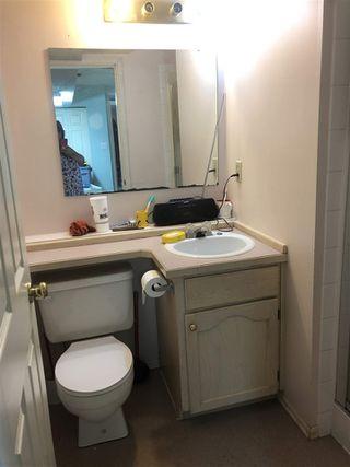Photo 16: 20859 117TH Avenue in Maple Ridge: Southwest Maple Ridge House for sale : MLS®# R2397128