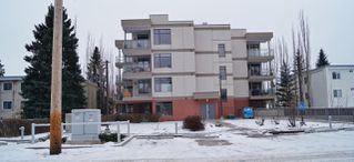 Photo 29: 207 11120 68 Avenue in Edmonton: Zone 15 Condo for sale : MLS®# E4181051