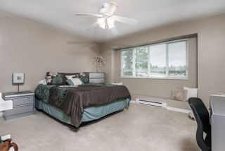 Photo 13: 2173 LAURIER Avenue in Port Coquitlam: Glenwood PQ House for sale : MLS®# R2433222