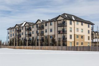 Photo 22: 209 10530 56 Avenue in Edmonton: Zone 15 Condo for sale : MLS®# E4190947