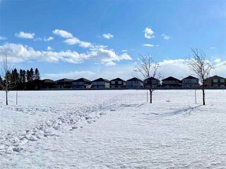 Photo 41: 3632 CLAXTON Place in Edmonton: Zone 55 House for sale : MLS®# E4194049
