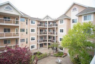 Photo 17: 304 10511 42 Avenue in Edmonton: Zone 16 Condo for sale : MLS®# E4198614
